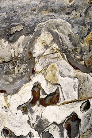 abstract rock art #7, Point Lobos,CA